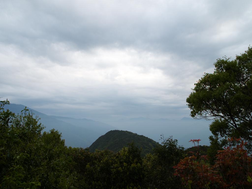 20140404 東眼山森林遊樂區